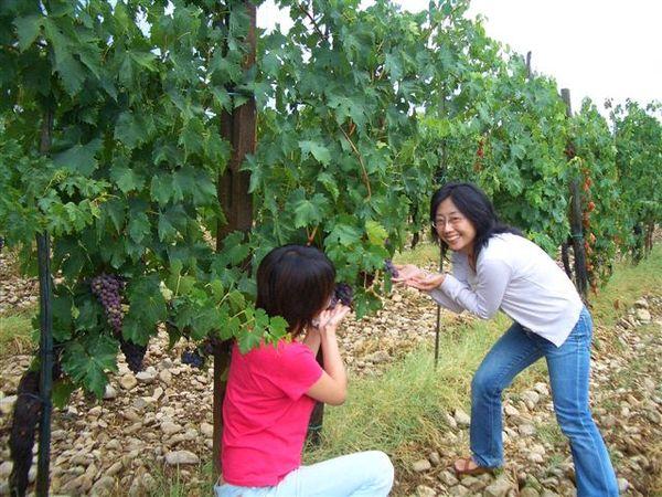 借葡萄來拍照