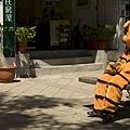 老虎看鏡頭20080925-0082.jpg