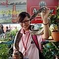 蟒蛇初體驗