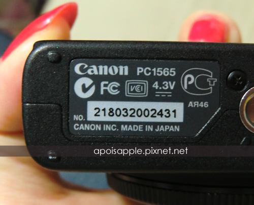 CIMG9842.JPG