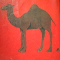 一個駝峰的駱駝,牠的大便是一個峰