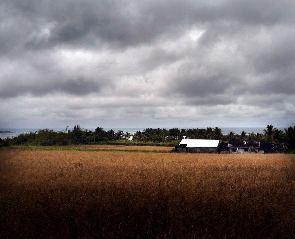 05農村景色