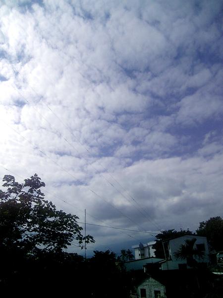 090106-1.jpg