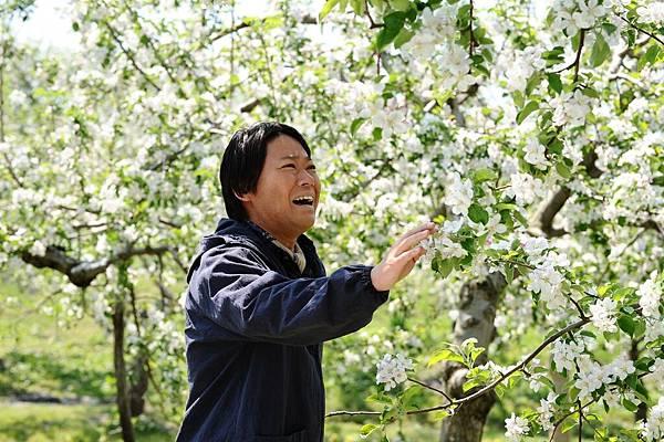 【這一生,至少當一次傻瓜】阿部貞夫飾演木村秋則 等了11年 蘋果樹終於開花
