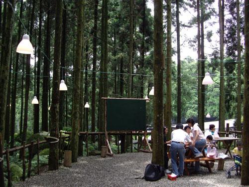 綠光森林11.jpg