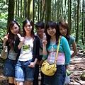 綠光森林13.jpg