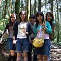 綠光森林14.jpg