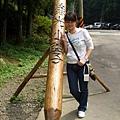綠光森林20.jpg