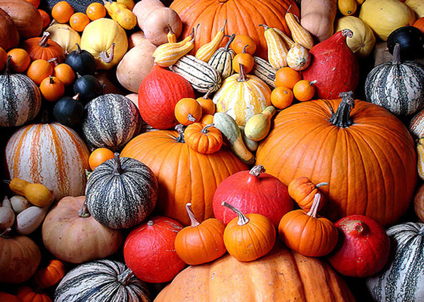 01-health-benefits-of-pumpkin