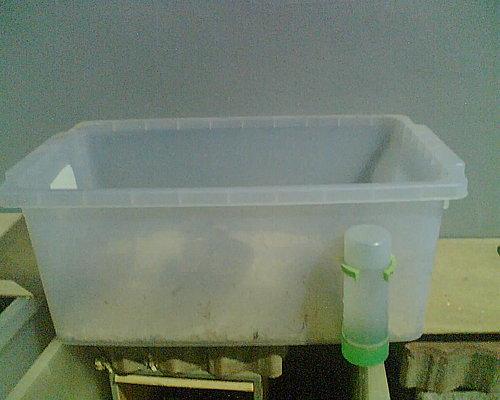 刺蝟的整理箱,可自行購買鳥用水器,上下挖兩個控固定即可。