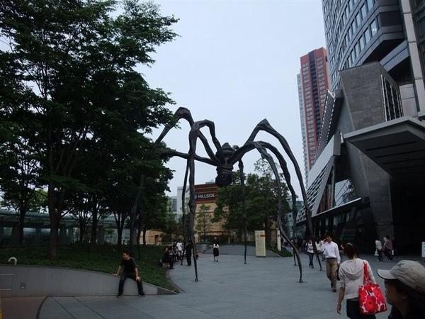 大蜘蛛.jpg