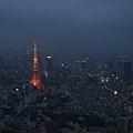 夜晚的東京鐵塔.jpg