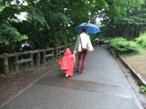 紅斗篷雨衣.jpg