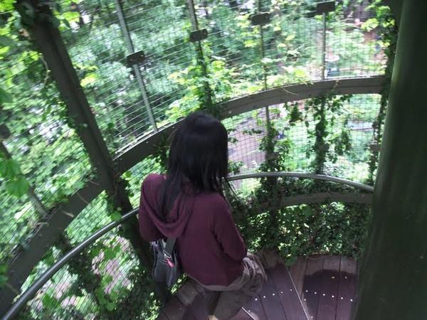 旋轉樓梯.jpg