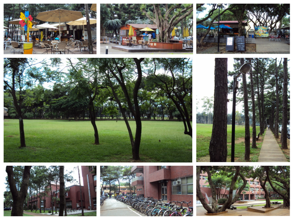 中央大學1.jpg