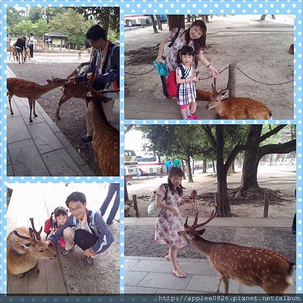 PhotoGrid_1374111463918.jpg