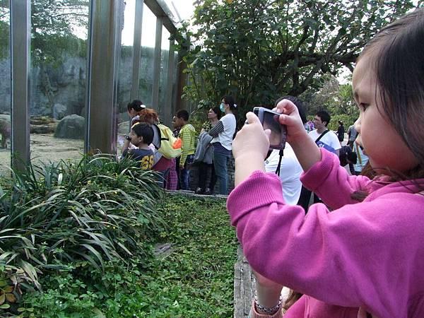 妞現在很愛自已拍照,還自已帶相機出來,可以拍動物