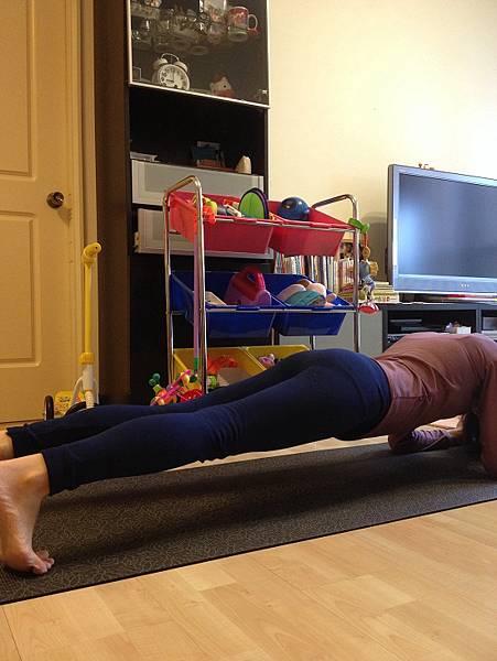 plank(棒式撐體)