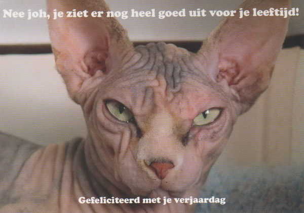 42-NL-147814.jpg
