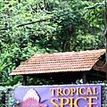 spice garden.jpg