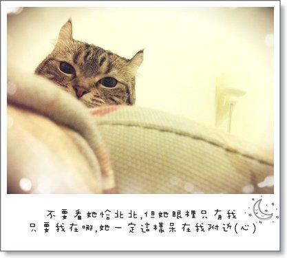 wxuNAul5FJ9WgHwW4.cG4w
