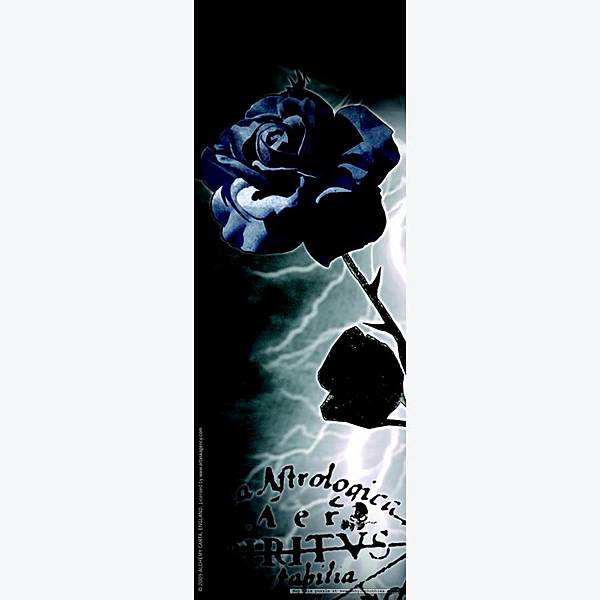 the-black-rose-alchemy-gothic.jpg
