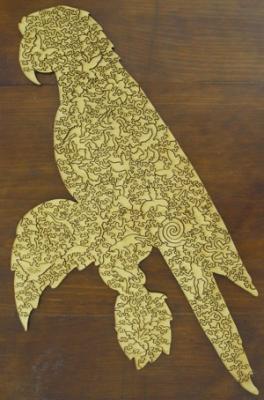 macaw-back-300