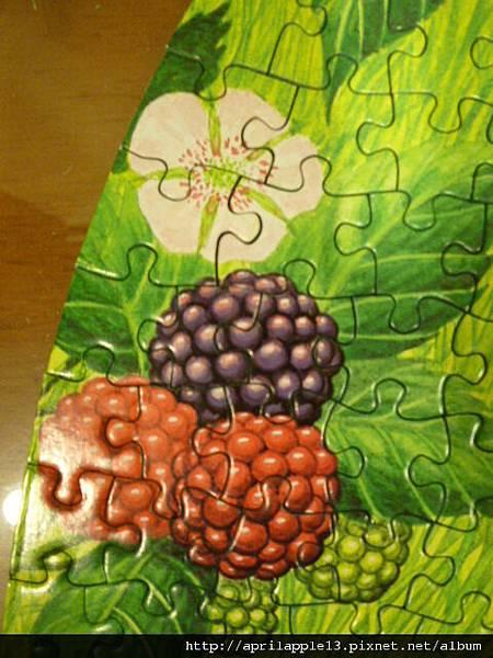 左方的野莓