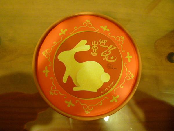 喜迎兔正面照