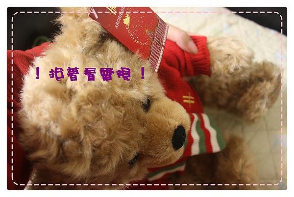 Harrod跨年熊-11.JPG