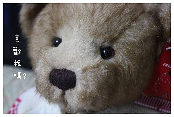 10012-Harrods跨年熊-07.JPG