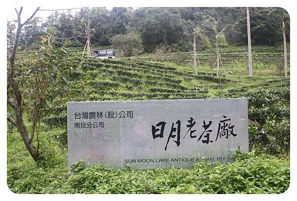 10207-日月老茶廠-01.JPG