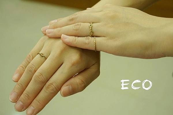 ECO-04.jpg