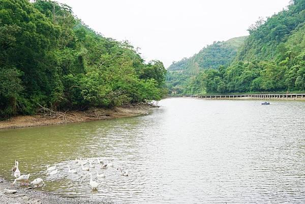 長埤湖2.jpg