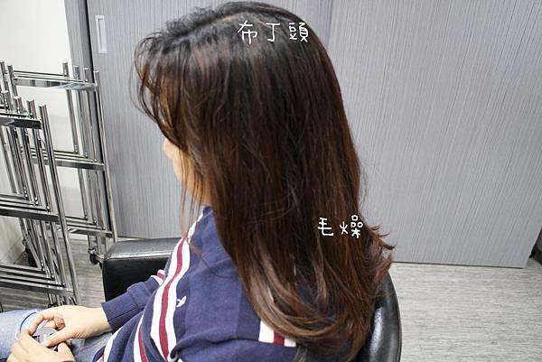 20190106-wor hair三重店-04