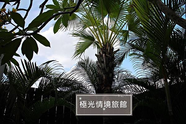 20190620-極光情境-21.JPG