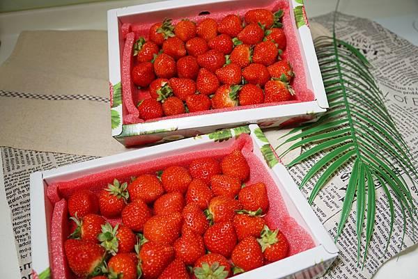 有機蘋果草莓3.jpg