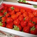 蘋果草莓1.jpg