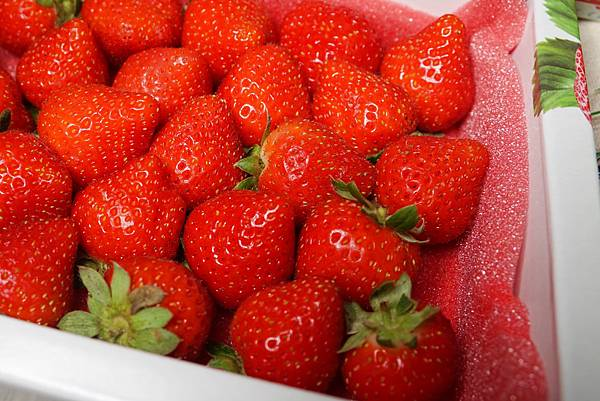 蘋果草莓2.jpg