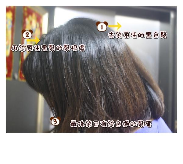 染髮體驗-24.jpg