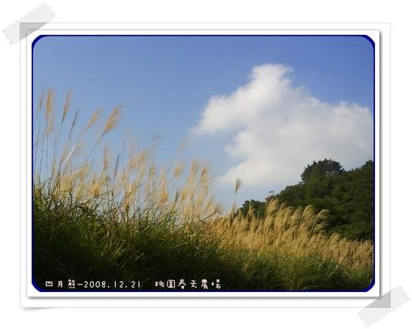 20081221-春天農場.jpg