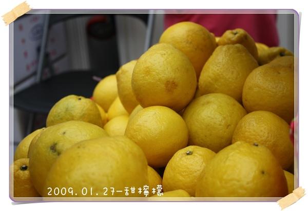 20090127-甜檸檬-01.jpg