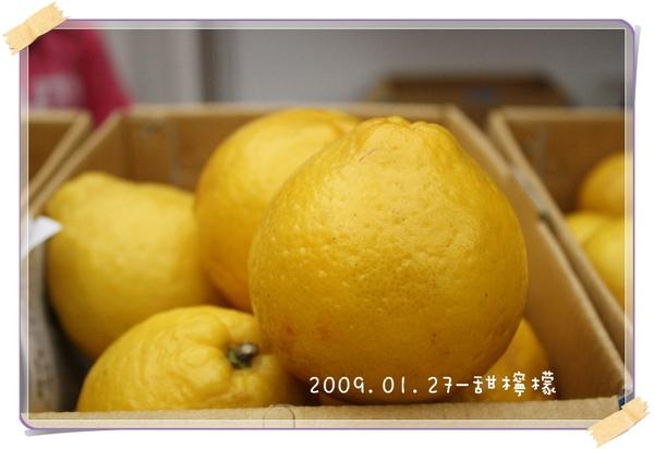 20090127-甜檸檬-02.jpg