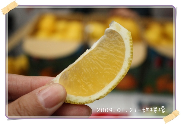 20090127-甜檸檬-03.jpg