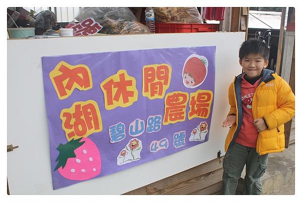 10001-採草莓-23.JPG