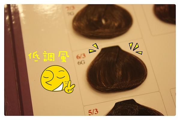 染髮體驗-09.JPG