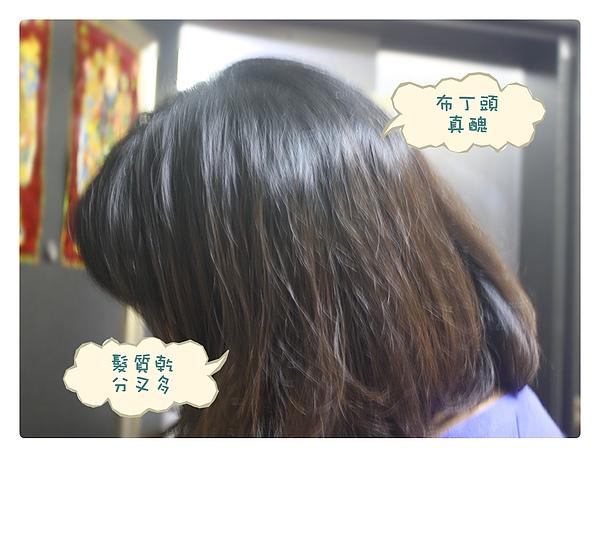 染髮體驗-23.jpg
