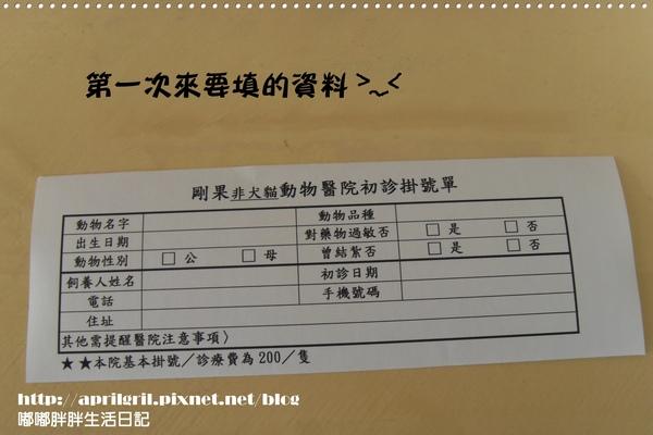 SDC18710.JPG