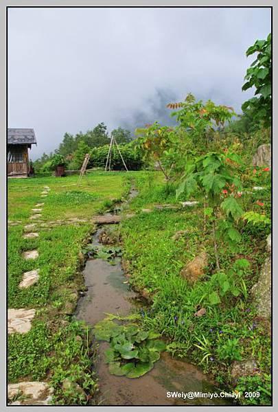 引山泉水的小河流.jpg