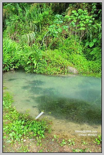 引天然山泉水的小水塘.jpg